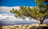 krajolik oko aleppa, foto