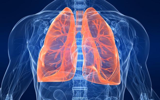 lungs-diagram-120926