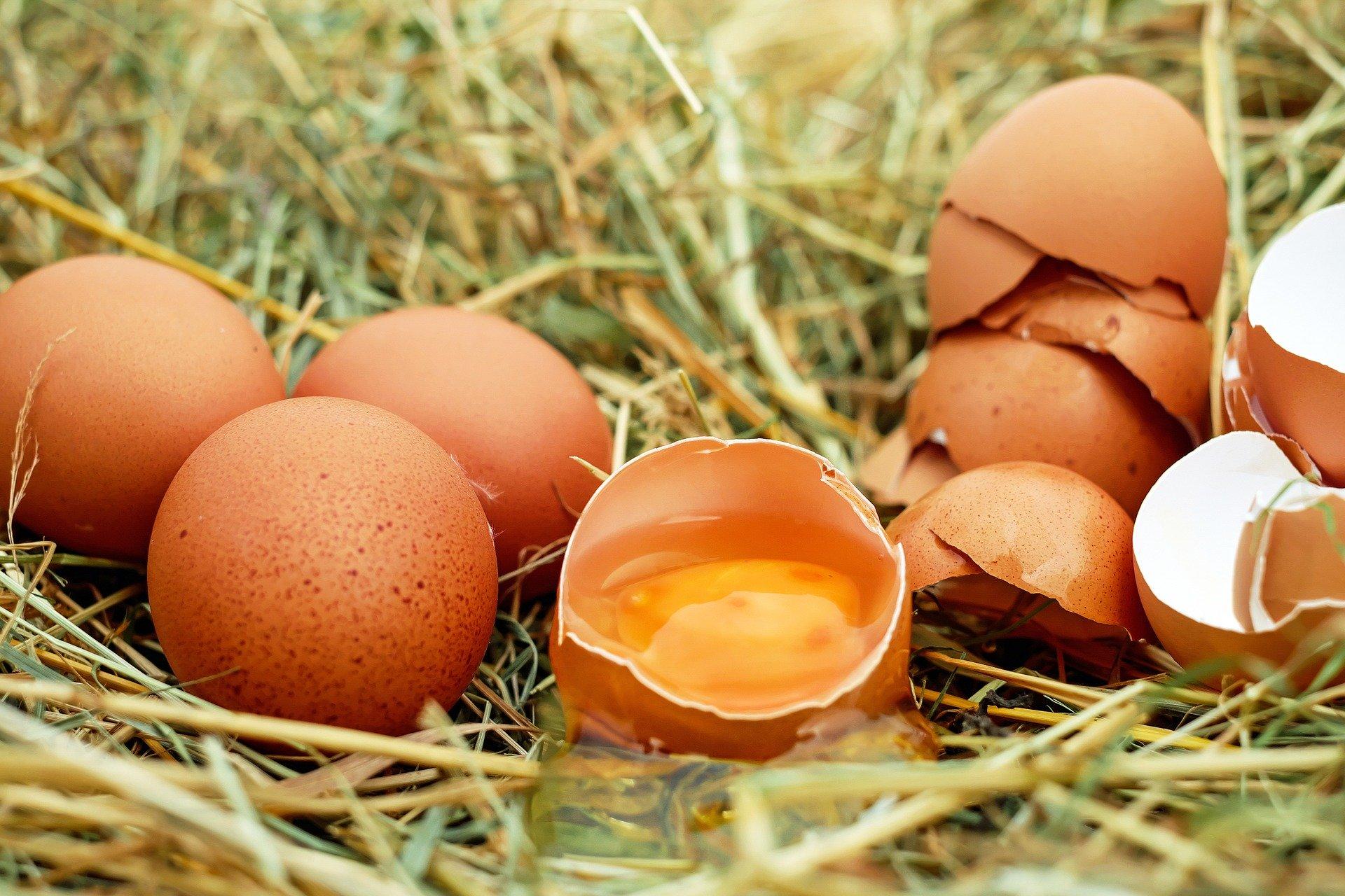 POSLJEDICE MOGU BITI POŽELJNE, ALI I POGUBNE: Stručnjaci objašnjavaju što će se dogoditi s vašim tijelom ako pojedete sirovo jaje