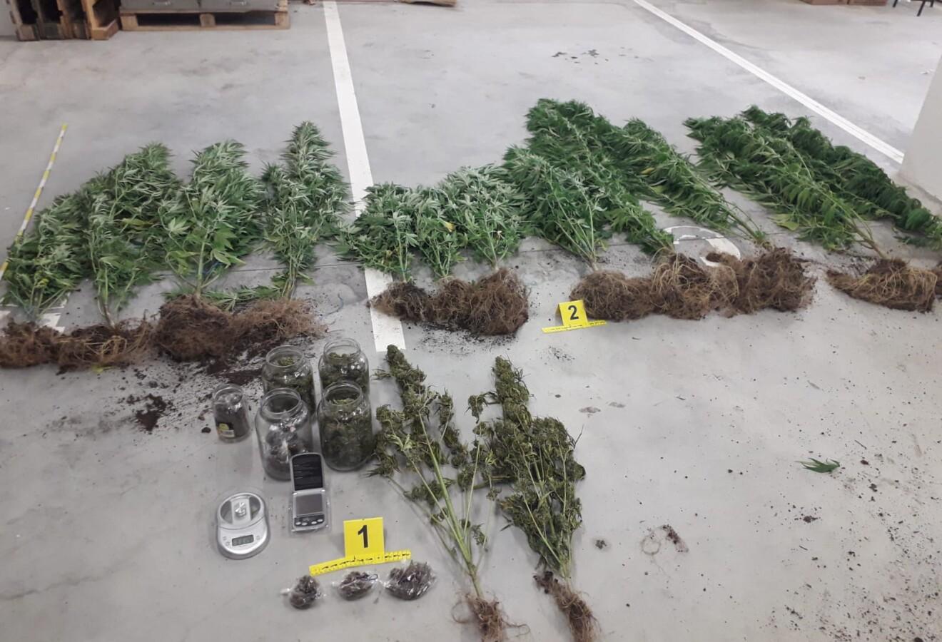Granična policija pretragom vozila pronašla 36 kg